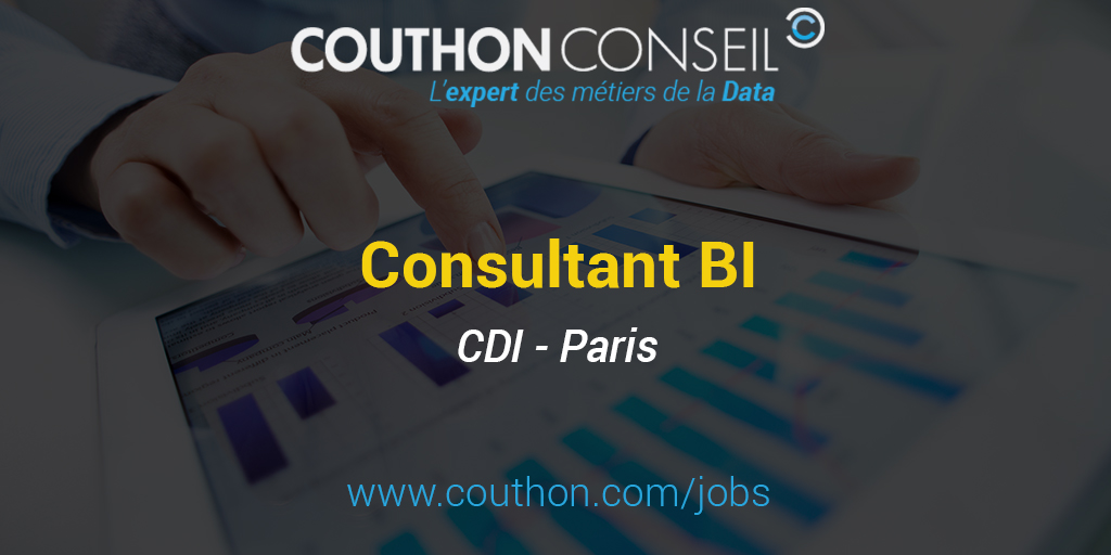 consultant business intelligence  paris