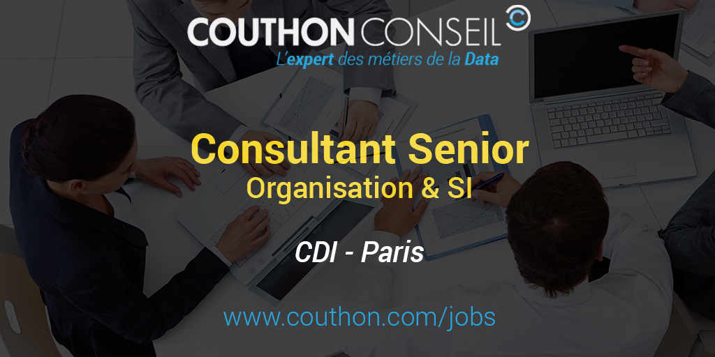 consultant senior organisation  u0026 si  paris